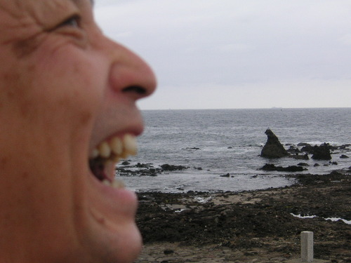 やっと会えたゴジラ岩
