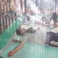 蚊帳の中でお昼寝タイム