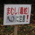 まむし(毒蛇)に注意!